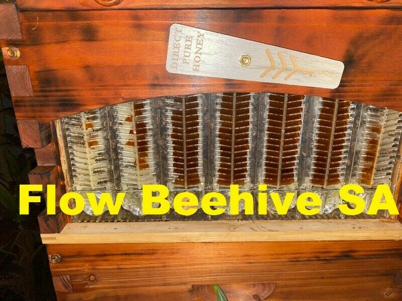 OutFlow bee hive . Harvest honey directly from your own Beehive