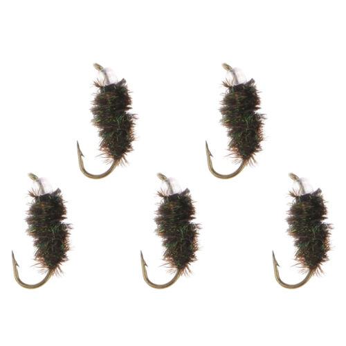 5 stücke Forelle Fliegen Fliegen Scud Shrimps Cezch Fliegen Nymphen