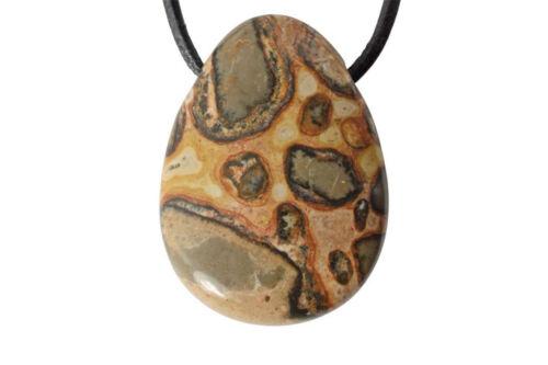 pierre trouée Pendentif léopardite ou oncolithe cordon en cuir