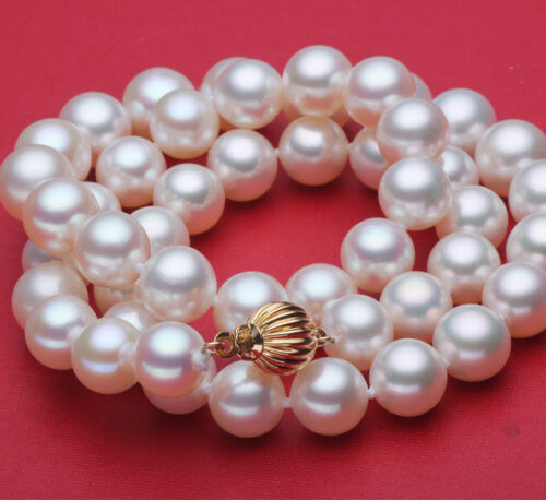 AAA Naturel 10 mm Blanc Lanterne Bouton Coquillage Collier de perles 18 in environ 45.72 cm