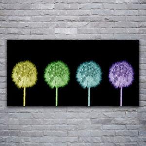 Acrylglasbilder Wandbilder aus Plexiglas® 120x60 Blume Pflanzen
