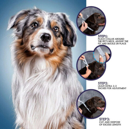 1pc Adjustable Flea and Tick Collar Small Medium Large Dogs 8 Month ProtecO fg