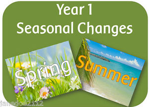 Year 1 Science Seasonal Changes Spring Summer Ks1 Teaching