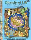 Diversity of Life: The Illustrated Guide to Five Kingdoms by Michael Dolan, Lynn Margulis, Karlene V. Schwartz (Sheet map, rolled, 1999)