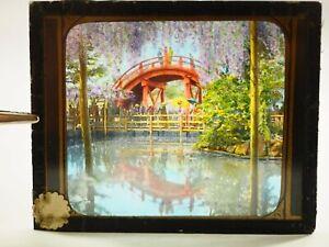 Ponte-amp-Wistaria-Nikko-Giappone-Mano-Colorato-Magic-Lantern-Museo-Scorrimento