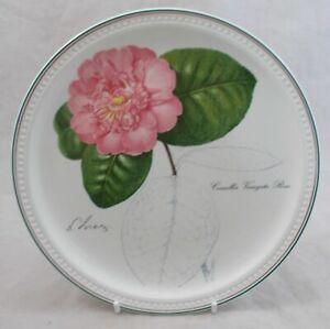 Villeroy-amp-Boch-Piatto-Ceramica-collezione-Camelie-porcellana-con-disegno-Liez