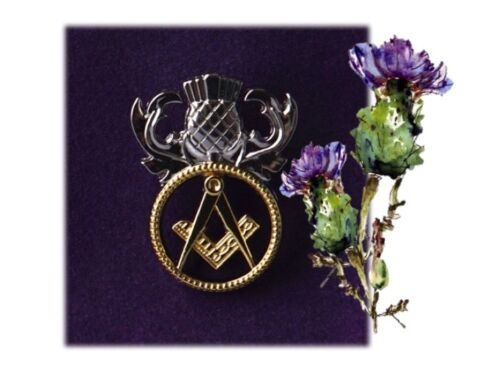 The 2019  Pin Badge every proud Scottish Freemason would love to own
