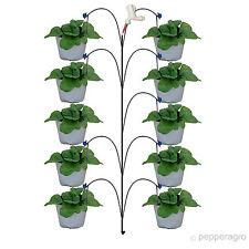 GARDENING KIT FOR TERRACE OR BALCONY SEEDS SOIL DRIP IRRIGATION KIT 10 PLANTS