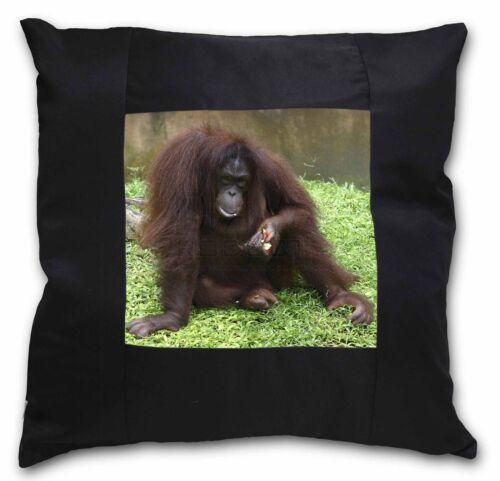 AM-7-CSB Orangutan Black Border Satin Feel Cushion Cover With Pillow Insert
