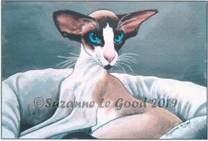 Oriental-cat-Bicolour-Siamese-art-print-from-original-painting-Suzanne-Le-Good