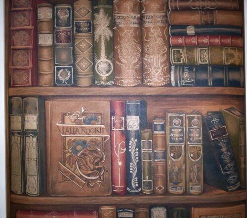 FAUX BOOKSHELF OF FAMOUS OLD BOOKS PREPASTED VINYL WALLPAPER # LL29570