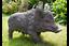 Wild Boar Pig Garden Garden Ornament
