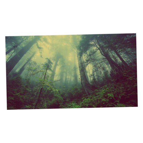 Wall Tapestry Wall Hanging Tapestries TV Blanket Curtain Sheer 70x70/'/' #8
