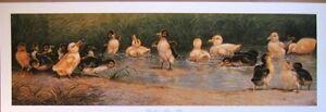 art-print-DUCKLINGS-TAKE-A-DIP-vintage-baby-ducks-duck-bird-pond-swimming-29x10