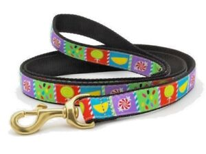 Dog-Puppy-Up-Country-Design-Sweetie-Leash-6-039-L-x-1-034-W-Made-in-USA