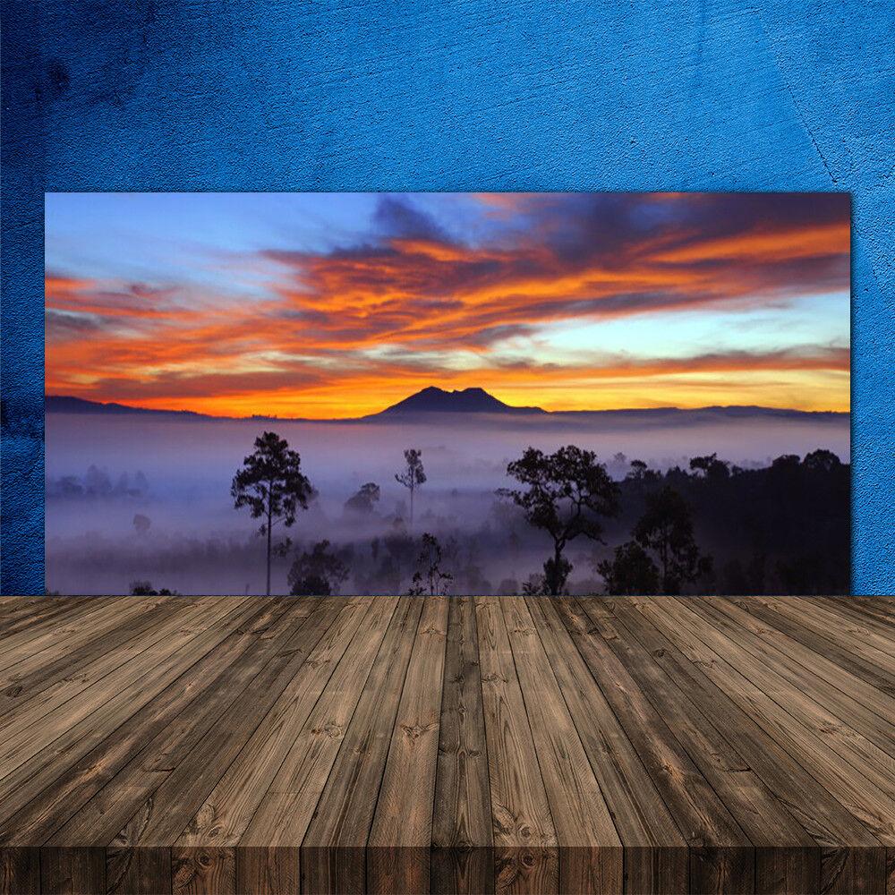 Crédence de cuisine en verre Panneau 120x60 Paysage Arbres Brouillard