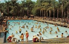 ANAHEIM CA 1957 Panoramic View of the City Park Plunge with all the kids VINTAGE