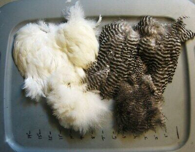 Ewing Soft Hackle w// Chickabou/>Hen Saddle/>Feathers/>Marabou/>COMBINE SHIPPING