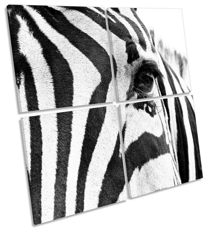 Rayas Cebra Animal Lona Pared Arte Cuadrado múltiples de impresión de múltiples Cuadrado f1aa18