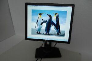 "Dell P1913S LED Monitor 19"" VGA DVI DP w/2-Port USB P1913Sb P1913Sf 39WWP NWXT6"