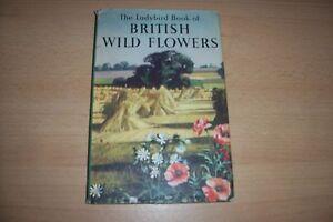 LADYBIRD-BOOK-British-Wild-Flowers-DUST-JACKET-HARDBACK-2-6-NET