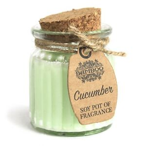 2-x-Cucumber-Fresh-Soy-Pot-of-Fragrance-Candles-Great-Natural-Scent-Glass-Jar