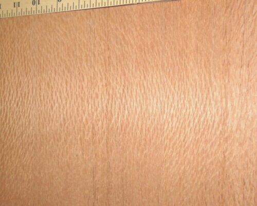 "Australian Lacewood pebble figure wood veneer 24/"" x 96/"" with paper backer 1//40/"""