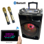 thumbnail 2 - SONKEN D-12 + DAC (S-TV) BLUETOOTH KARAOKE POWERED SPEAKER - 2 WIRELESS MIC'S