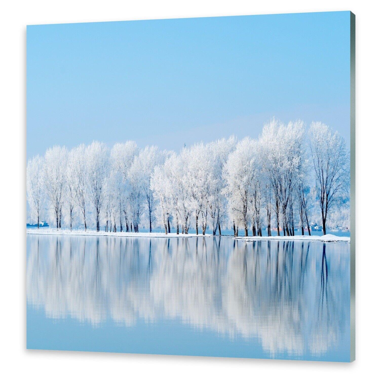 Cristal acrílico imágenes muro imagen desde plexiglas ® invierno imagen de invierno ® 8ad1df