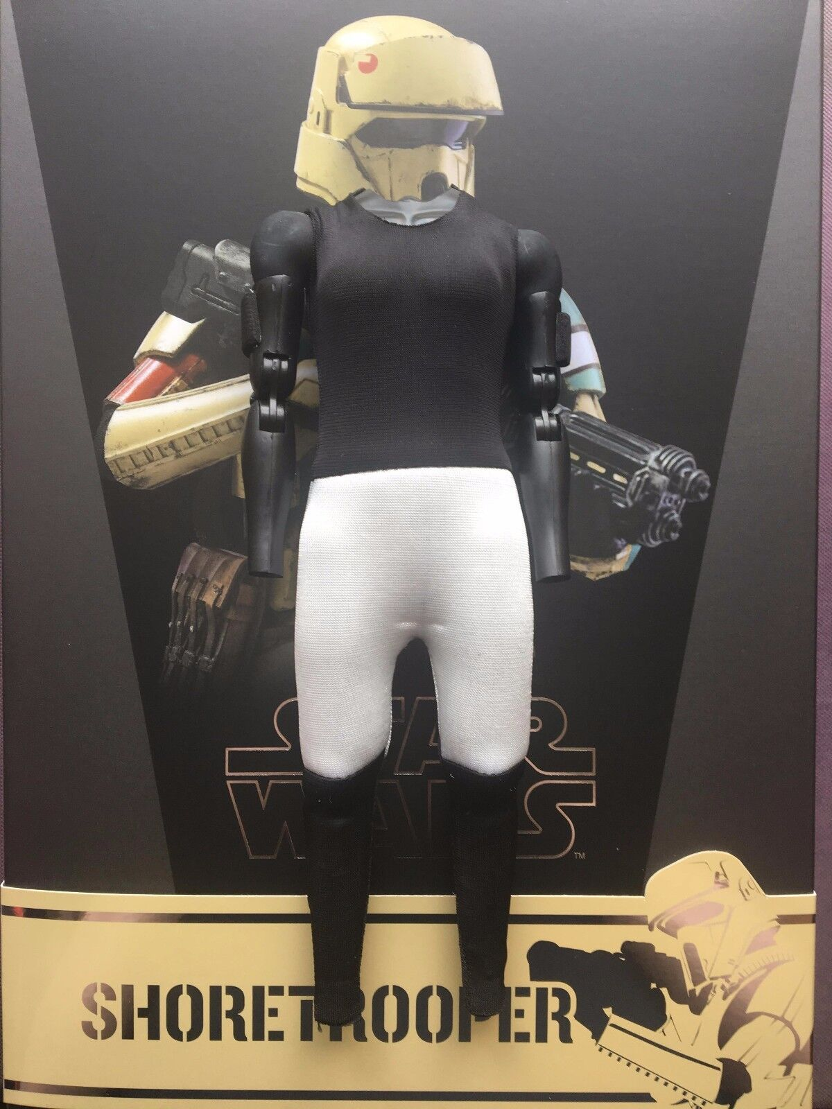 Hot Toys Star Wars Rogue One Shoretrooper Shoretrooper Shoretrooper 12  Nude Padded Body loose 1 6th scale c00651