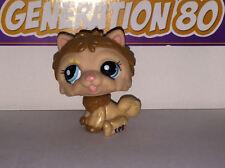 Littlest PetShop CHIEN CHOWCHOW MARRON 1996 D003 DOG CHOW CHOW Pet Shop