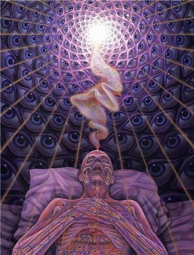 Trippy Alex Grey Abstract Silk Art Print Poster 32''x24''inch 11
