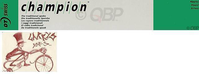 Champion 2.0 Argent-DT Swiss Champion parle: 2.0 mm boîte argent J-Bend 248 mm