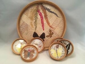 1970-039-s-Vintage-Bamboo-Tray-and-6-Coaster-Set-Butterfly-Theme