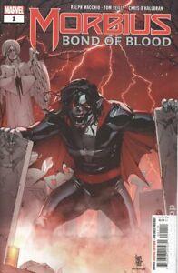 Vampirella Volume 5 #11A Parrillo Variant NM 2020 Stock Image