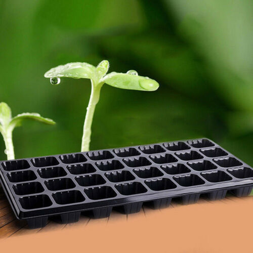 Practical Multi-Cell Seedling Starter Tray Seed Germination Plant Propagation TD