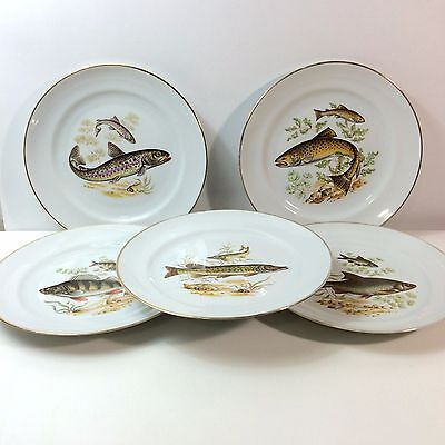 "5 Naaman Israel White Porcelain Fish Plates 9.25"" Each Different"