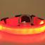 NEW-Dog-LED-Collar-Blinking-Night-Flashing-Light-Up-Glow-Adjustable-Pets-Safety miniature 8