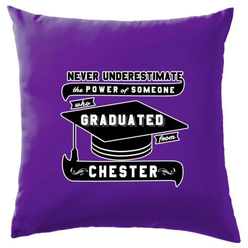 "8 couleurs 16/"" Chester graduate-coussin"