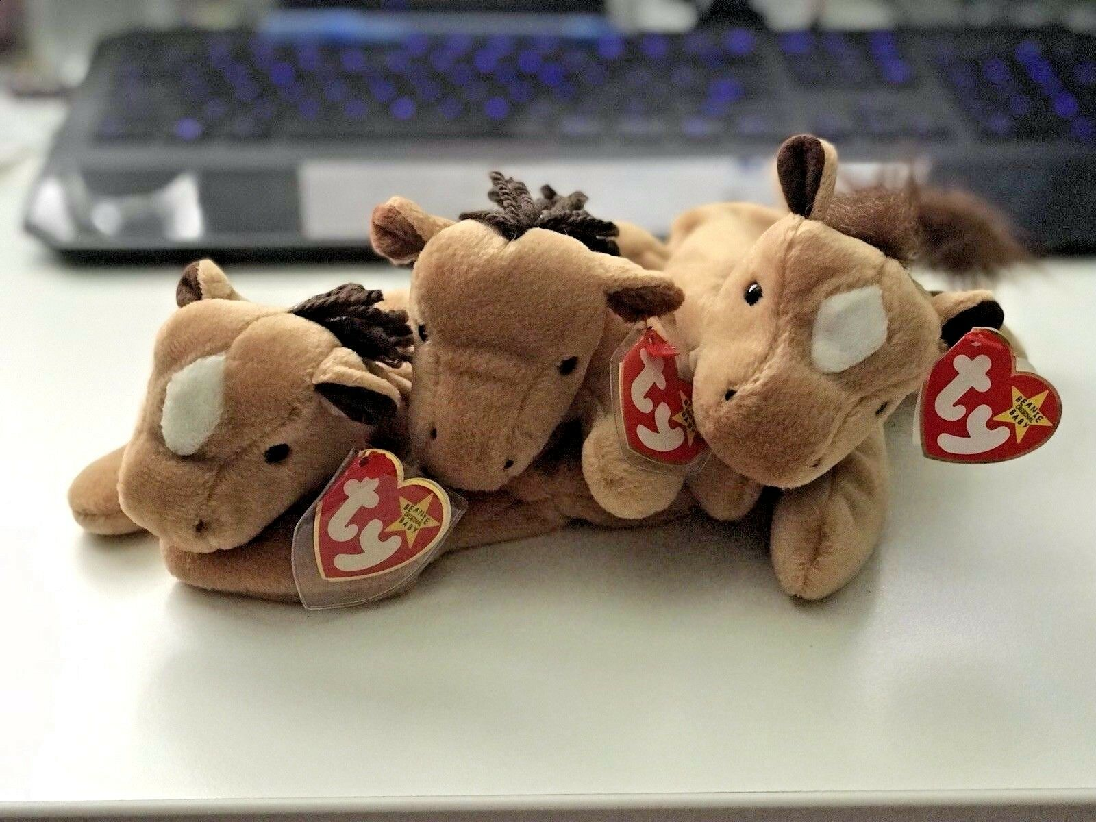 Ty Beanie Baby Derby The The The Horse 1995 Retired Set Of 3 Variations - RARE Mint Cond 2fac93