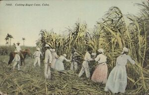 Image Is Loading CUBA CUTTING SUGAR CANE 7002 PUBL BY HARRIS