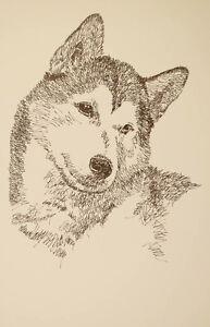 Siberian Husky Dog Art Portrait Print 68 Stephen Kline adds your dogs name free.