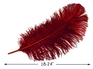 """10 Pieces 18-24/"""" White Prime Grade Large Ostrich Wing Plumes Centerpiece Feather"""