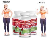 Hoodia Gordonii Extract 2000 - Pure Hoodia Gordonii - Weight Management - 3 Bot