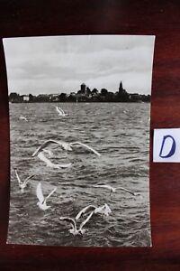 Ordonné Carte Postale Vues Saxe étaient (müritz)-afficher Le Titre D'origine
