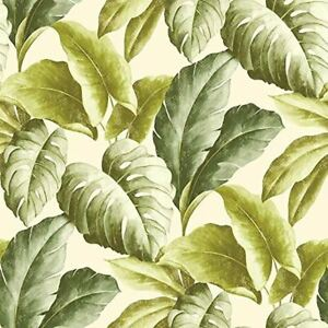 Botanical Vinyl Wallpaper Tropical Leaves Pattern Tree Textured Motif Green Ebay Find over 100+ of the best free tropical leaves images. details about botanical vinyl wallpaper tropical leaves pattern tree textured motif green
