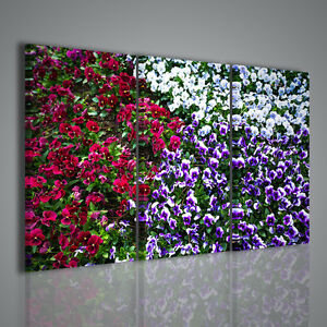Quadro violetta quadri moderni per arredamento casa e for Quadri particolari per arredamento