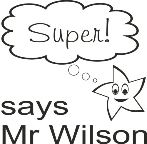 Personalised Teacher Stamp 4922 super excellent well done brilliant owl star