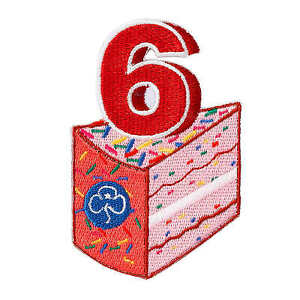 GIRLGUIDING-UK-BIRTHDAY-BADGE-Iron-on-ALL-AGES-RAINBOW-BROWNIE-6-7-8-9-10-GIFT