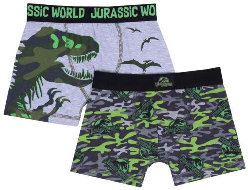 Underwear For Boys JURASSIC WORLD 2 x Green//Grey Trunk Fit Boxers